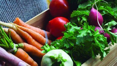 Photo of Une alimentation biologique est-elle vraiment sans danger?