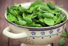 légumes verts