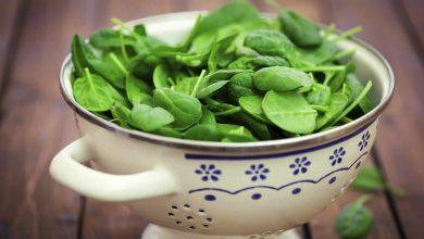 Photo of Les légumes verts pourraient retarder le déclin cérébral