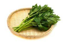 ashibata plante japonaise star des remèdes traditionnels contre le vieillissement