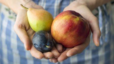 Photo of Fruits : comment bien les choisir quand on est diabétique ?