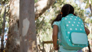 Photo of Une étude révèle le poids maximal du cartable à roulettes des écoliers