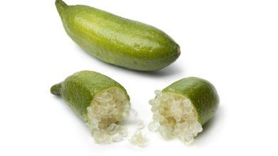 Photo of Le citron caviar : la perle des agrumes aux multiples bienfaits