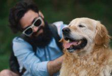 Animaux de compagnie : gage de bien-être à chaque instant de la vie ?