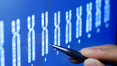 """Photo of """"Bébés OGM"""": l'OMS lance un registre mondial des recherches"""