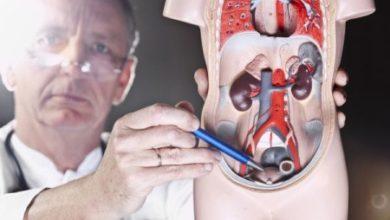 Photo of L'infertilité masculine et le cancer de la prostate pourraient avoir des causes communes