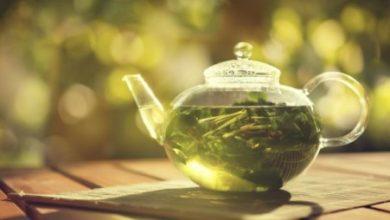 Photo of Un composant naturel du thé vert pourrait aider à combattre l'antibiorésistance