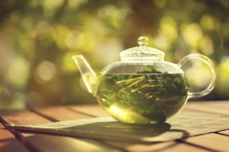Un composant naturel du thé vert pourrait aider à combattre l'antibiorésistance