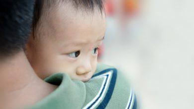 Photo of Un manque de protéines dans l'alimentation des pères pourrait nuire à la santé cardiovasculaire de leur enfant