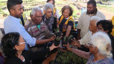 Photo of Un atelier de jardinage pour les patients atteints d'Alzheimer