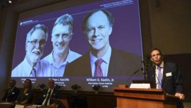 Photo of Le Nobel de médecine à deux Américains et un Britannique pour leurs travaux sur l'oxygène