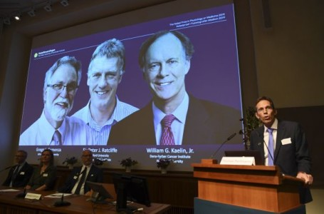 Le Nobel de médecine à deux Américains et un Britannique pour leurs travaux sur l'oxygène